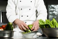 шеф-повар подготовляя салат Стоковые Изображения