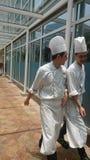 Шеф-повар прогулка Стоковое Изображение