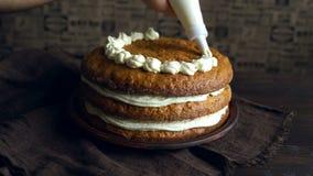 Шеф-повар украшая десерт Домодельный торт украшая Делать пирога моркови видеоматериал
