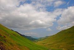 Шелковистый злаковик с долиной в районе озера Стоковая Фотография RF