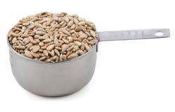 Шелушат семена подсолнуха в измерении чашки Стоковая Фотография