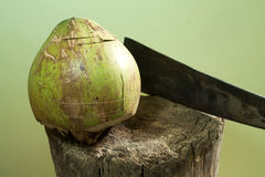 Шелушение кокоса Стоковое Фото