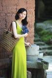 Шикарная азиатская дама Стоковые Фото