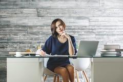 Шикарная женщина работая на проекте Стоковые Изображения RF