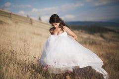 Шикарная невеста в элегантном платье представляя на солнечном летнем дне на предпосылке гор Стоковые Изображения