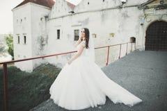 Шикарная романтичная нежная стильная красивая кавказская невеста на замке предпосылки старом барочном Стоковая Фотография