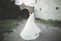 Шикарная романтичная нежная стильная красивая кавказская невеста на замке предпосылки старом барочном Стоковые Изображения RF