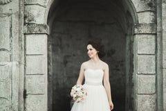 Шикарная романтичная нежная стильная красивая кавказская невеста на замке предпосылки старом барочном Стоковое Изображение