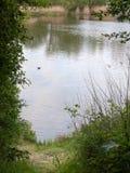 Шикарная сторона воды на реке снаружи в поверхности пруда Великобритании стоковая фотография