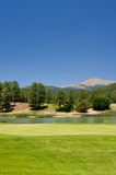 Шикарное поле для гольфа в Аризоне Стоковая Фотография