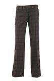 шикарные женские брюки стоковое изображение