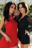 Шикарные женщины с темными волосами в элегантных платьях Стоковая Фотография