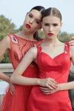 Шикарные молодые женщины с темными волосами в элегантном красном платье Стоковое Фото
