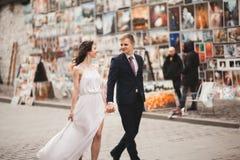 Шикарные пары свадьбы, невеста, groom целуя и обнимая на фоне картин Стоковая Фотография