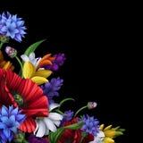 Шикарные сельские цветки, флористическая предпосылка Стоковое фото RF