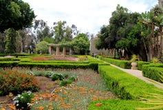 Шикарный ландшафтный сад, парк бальбоа, Сан-Диего, Калифорния, 2016 Стоковое Изображение RF