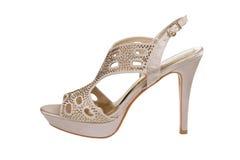 Шикарный ботинок шпилек Стоковое Изображение
