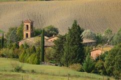 Шикарный виноградник в итальянской сельской местности Стоковое Изображение