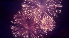 Шикарный пестротканый дисплей фейерверков на предпосылке петли неба звезды иллюстрация штока