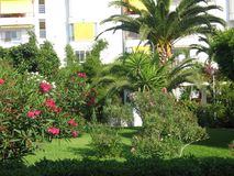 Шикарный сад в Torrox, Испании Стоковое Изображение RF