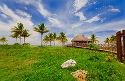 Шикарный тропический взгляд ландшафта при деревянный мост водя к зоне пляжа стоковое изображение