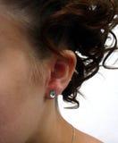 шикарный hairdo Стоковые Изображения RF