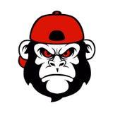 Шимпанзе в крышке бесплатная иллюстрация