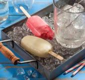 Шипучки домашнего мороженого Стоковые Изображения RF