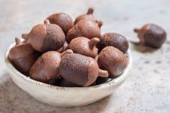 Шипучки шоколадного торта жолудя стоковые фотографии rf
