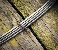Шип железной проволоки на древесине Стоковая Фотография RF