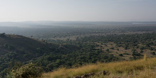 Широкая африканская степь Стоковое Изображение