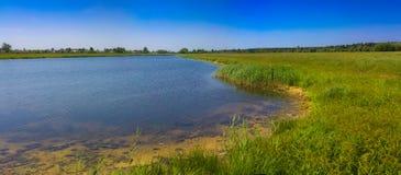 Широкая панорама реки и пущи Стоковые Фотографии RF