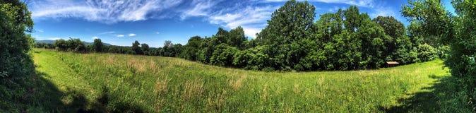 Широкая панорама луга с дистантными горами Стоковые Изображения