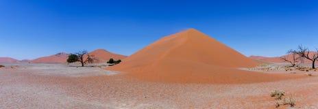Широкая дюна 45 панорамы в sossusvlei Намибии Стоковые Фотографии RF