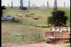 Широкие автомобили и тележки съемки управляя через месторождение нефти акции видеоматериалы