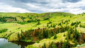Широкие открытые злаковики и Rolling Hills долины Nicola Стоковые Фото