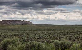 Широкий ландшафт пустыни Стоковые Изображения RF