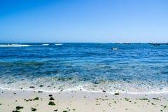 Широкий взгляд seashore на Algarrobo Чили Стоковая Фотография RF
