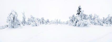 Широкий панорамный взгляд снежного ландшафта в Beitostolen, Норвегии Стоковое Фото
