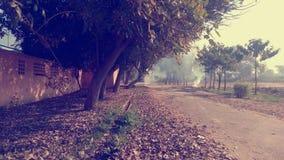 Широкий путь Стоковое фото RF