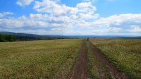 Широкое поле среди лета массива горы Стоковое Изображение RF
