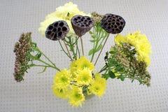 Широкоформатный взгляд цветков Стоковая Фотография RF