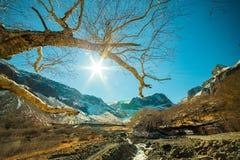 Широкоформатный всход на горе Changbai Стоковые Фотографии RF