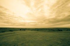 Широко открытый ландшафт Техаса Стоковые Фотографии RF