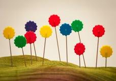 Шить поле штырей цветков Стоковое Изображение