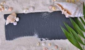 Шифер в песке с seashells и лист стоковая фотография