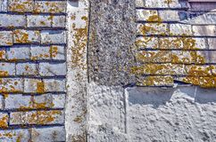 Шифер, мох и гипсолит стоковое фото rf