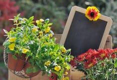 Шифер для сообщения в саде стоковые фото