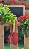 Шифер для сообщения в саде стоковое изображение