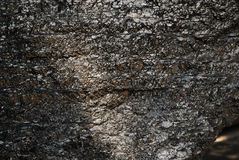 Шишка угля рядом Стоковое Изображение